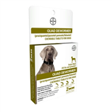 BAYER QUAD DEWORMER DOG 45# PLUS 2 COUNT - Palmer Farm and Ranch